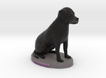 Custom Dog Figurine - Scooter