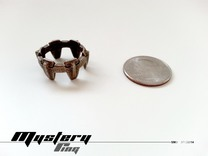Mystery Ring (small) 17 mm in Matte Bronze Steel