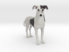 Custom Dog Figurine - Bandit in Full Color Sandstone