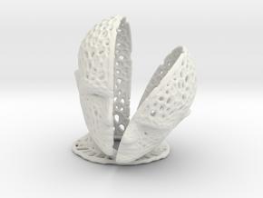 Head Voronoi in White Natural Versatile Plastic