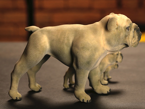 Bulldog XXL Full Color Sandstone - hollow in Full Color Sandstone