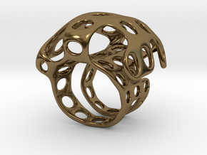 s4r016s7 GenusReticulum  in Polished Bronze