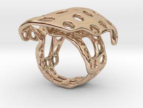 s4r014s6 GenusReticulum  in 14k Rose Gold Plated Brass