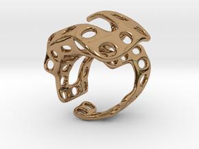 s4r018s7 GenusReticulum in Polished Brass