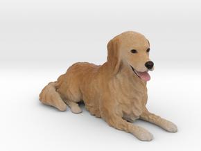 Custom Dog Figurine - Komugi in Full Color Sandstone