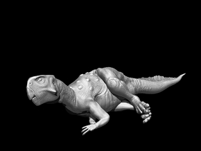 Psittacosaurus Resting 1:12 scale model in White Strong & Flexible