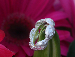 Hidden Heart Ladybug Leaves of Grass Eternity Ring in Raw Silver