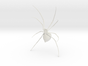 Widow Standing in White Natural Versatile Plastic