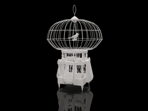 "Cage for birds from the ""COCOLA"" for shapeways in Metallic Plastic"