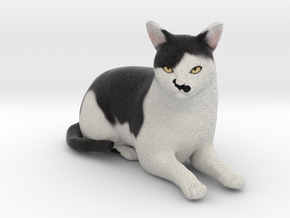 Custom Cat Figurine - Hitler in Full Color Sandstone