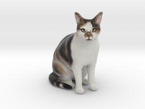Custom Cat Figurine - Simba in Full Color Sandstone