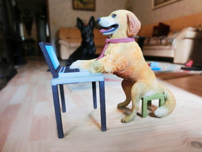 Golden Retriever stuck with Work Laptop in Full Color Sandstone