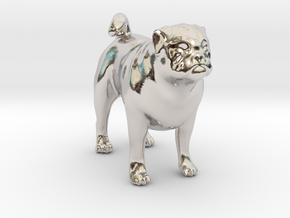 Standing Fawn Pug in Rhodium Plated Brass