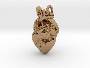 Anatomical Heart Pendant in Polished Brass