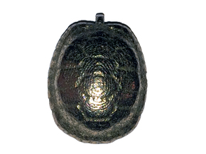 Turtle Shell Pendant Version 1 in Polished Bronzed Silver Steel