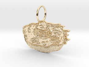 Animal Cell Pendant in 14k Gold Plated Brass