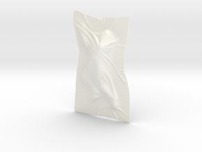 Shroud shape penholder 003 in White Processed Versatile Plastic