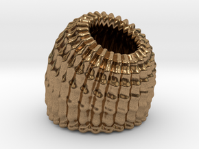 Brain Coral Jewellery Container in Natural Brass