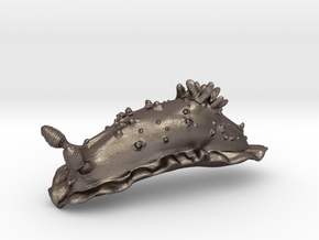 Dorisoni the Nudibranch in Polished Bronzed Silver Steel