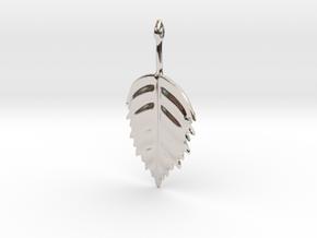 Birch Leaf Pendant in Rhodium Plated Brass