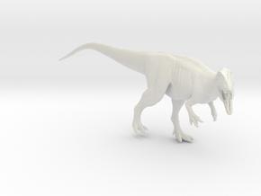 Dinosaur Carcharodontosaurus 1:40 V2  in White Strong & Flexible