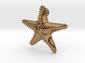 Starfish in Polished Brass