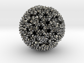 Reovirus in Polished Silver