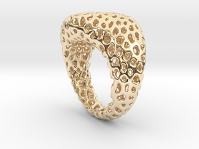 Swing ring T20 in 14K Yellow Gold