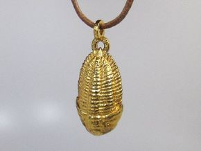 The Trilobite in Polished Gold Steel