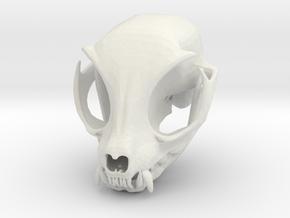 Cat Skull in White Natural Versatile Plastic