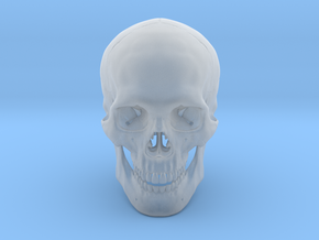 Realistic Human Skull With Removable Jaw V.2.00 in Smooth Fine Detail Plastic