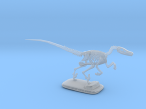 Dinosaurs Story Velociraptor Skeleton Full Color  in Smooth Fine Detail Plastic