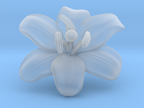 Lily Flower 1 - M in Smooth Fine Detail Plastic