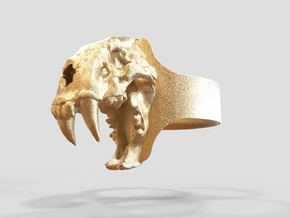 Sabretooth Ring in Polished Gold Steel: 9.5 / 60.25