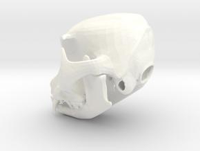 Large Cat Skull in White Processed Versatile Plastic