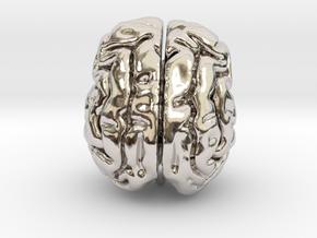 Cheetah brain in Rhodium Plated Brass