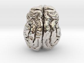 Leopard brain in Platinum