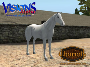 Horse White in Full Color Sandstone