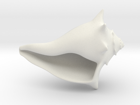 Whelk Model in White Natural Versatile Plastic