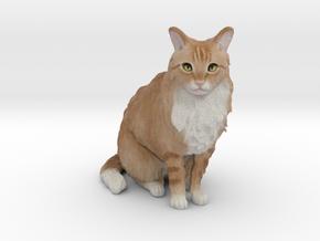 Custom Cat Figurine - Pluche in Full Color Sandstone
