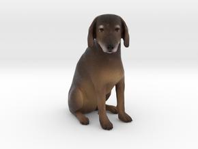 Custom Dog Figurine - Baxter in Full Color Sandstone