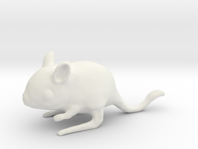 Jerboa in White Natural Versatile Plastic