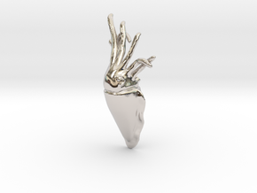 Cuttlefish Pendant or Brooch in Rhodium Plated Brass: Small