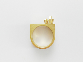 MIneral Ring - M in Raw Bronze