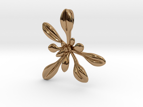 Large Arabidopsis Rosette pendant in Polished Brass