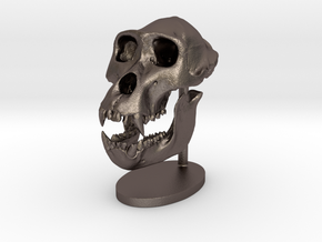 Gorilla Skull with base in Polished Bronzed Silver Steel