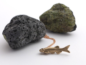 Zebrafish Pendant - Science Jewelry  in Polished Bronzed Silver Steel