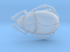 Scarab Beetle in Smooth Fine Detail Plastic