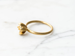 Succulent Stacking Ring No. 1 in Raw Brass: 6 / 51.5