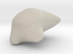 Cleromancy Token- Difficulties/Trials in Natural Sandstone